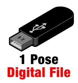 Digital File (1 Pose)